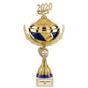 coues_trophees_medaille_sport_association_Ideacomm